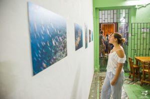 """Inauguración de la exposición """"Fische"""""""